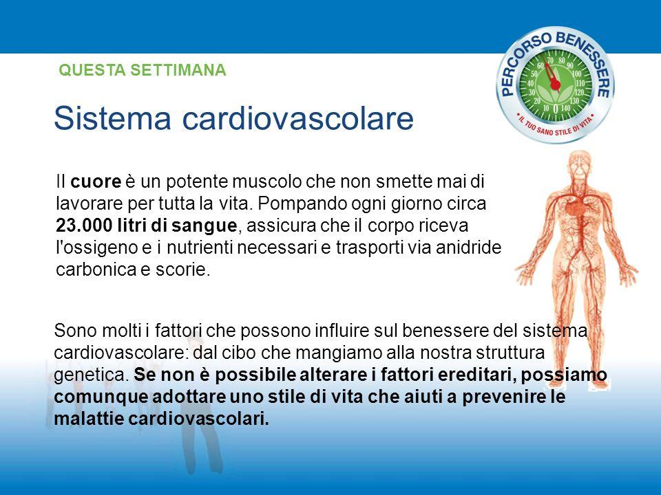 Sistema cardiovascolare QUESTA SETTIMANA Il cuore è un potente muscolo che non smette mai di lavorare per tutta la vita. Pompando ogni giorno circa 23