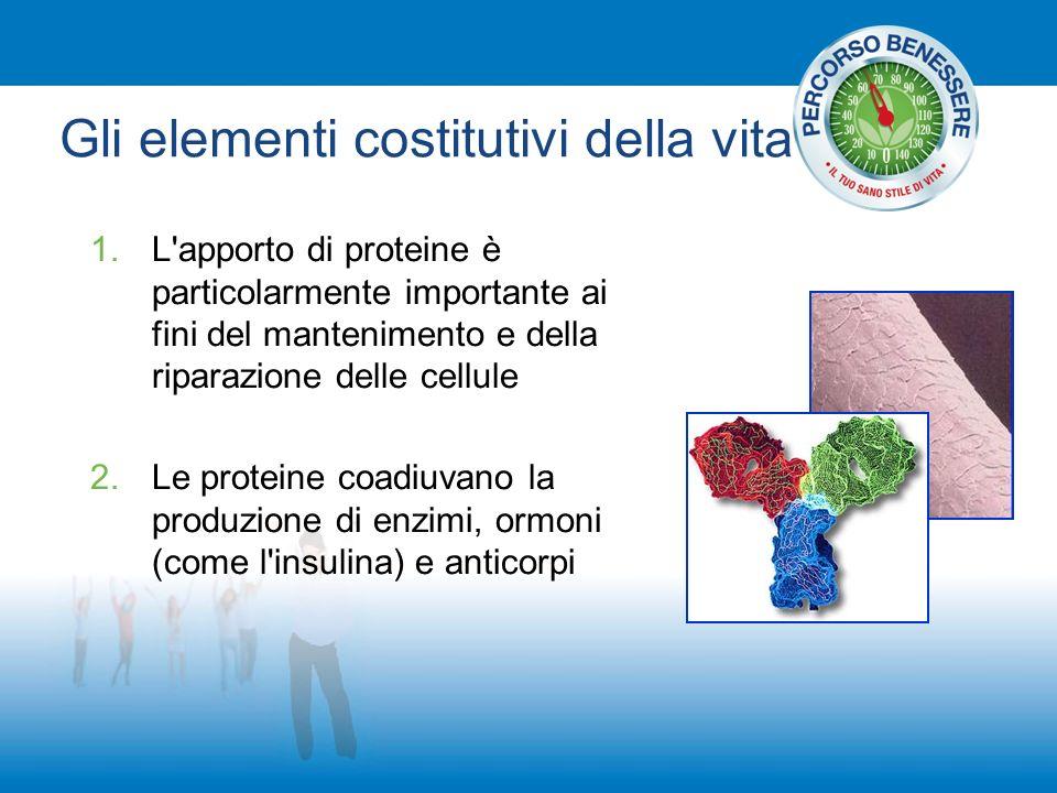 Gli elementi costitutivi della vita 1.L apporto di proteine è particolarmente importante ai fini del mantenimento e della riparazione delle cellule 2.Le proteine coadiuvano la produzione di enzimi, ormoni (come l insulina) e anticorpi