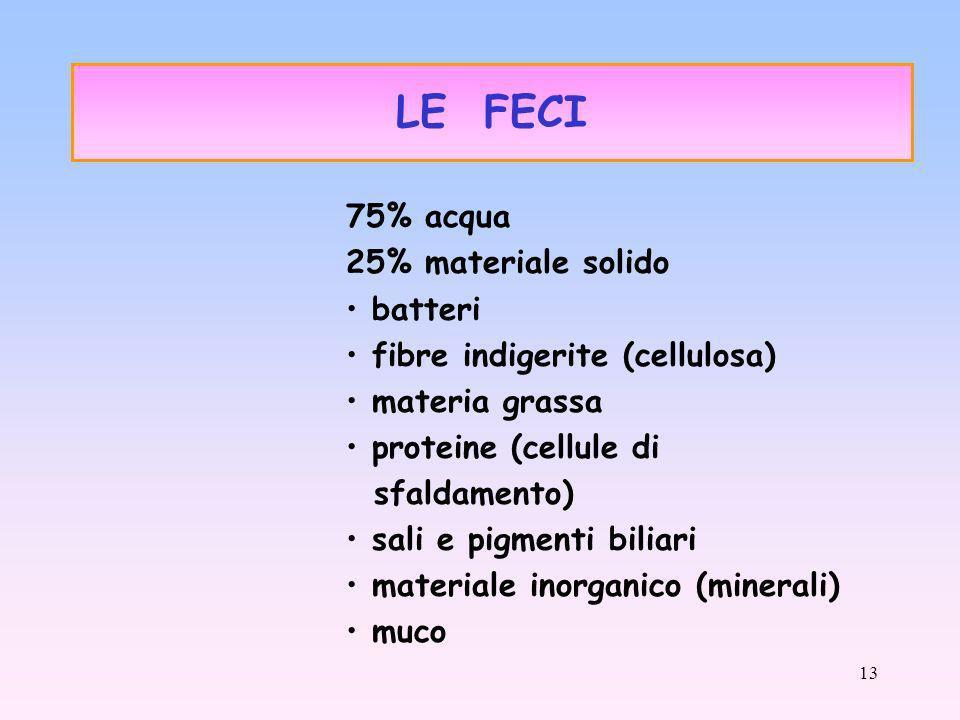 13 75% acqua 25% materiale solido batteri fibre indigerite (cellulosa) materia grassa proteine (cellule di sfaldamento) sali e pigmenti biliari materiale inorganico (minerali) muco LE FECI