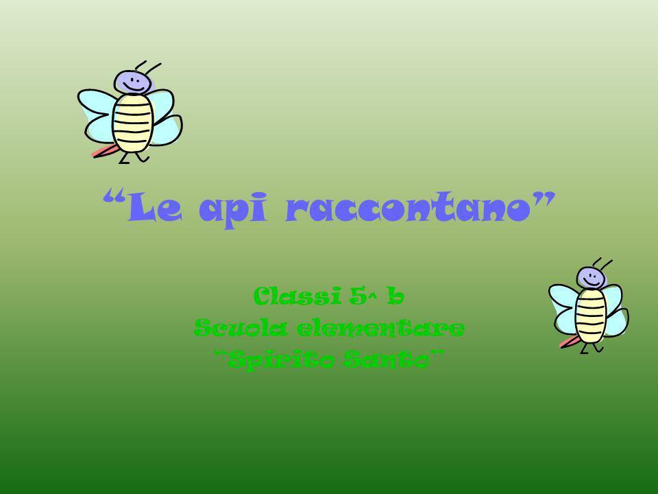 Le api raccontano Classi 5^ b Scuola elementare Spirito Santo