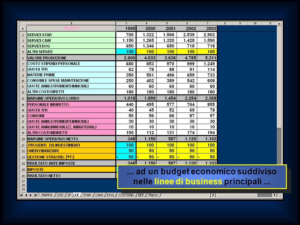 ... ad un budget economico suddiviso nelle linee di business principali...