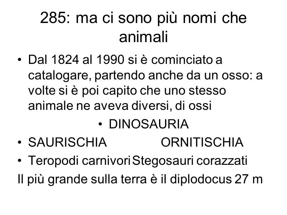 285: ma ci sono più nomi che animali Dal 1824 al 1990 si è cominciato a catalogare, partendo anche da un osso: a volte si è poi capito che uno stesso