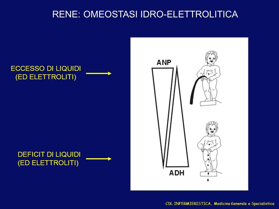 RENE: OMEOSTASI IDRO-ELETTROLITICA CDL INFERMIERISTICA, Medicina Generale e Specialistica ECCESSO DI LIQUIDI (ED ELETTROLITI) DEFICIT DI LIQUIDI (ED E