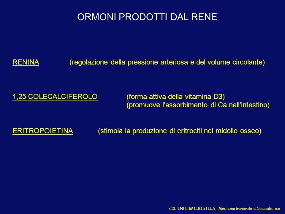 RENINA(regolazione della pressione arteriosa e del volume circolante) 1,25 COLECALCIFEROLO (forma attiva della vitamina D3) (promuove lassorbimento di