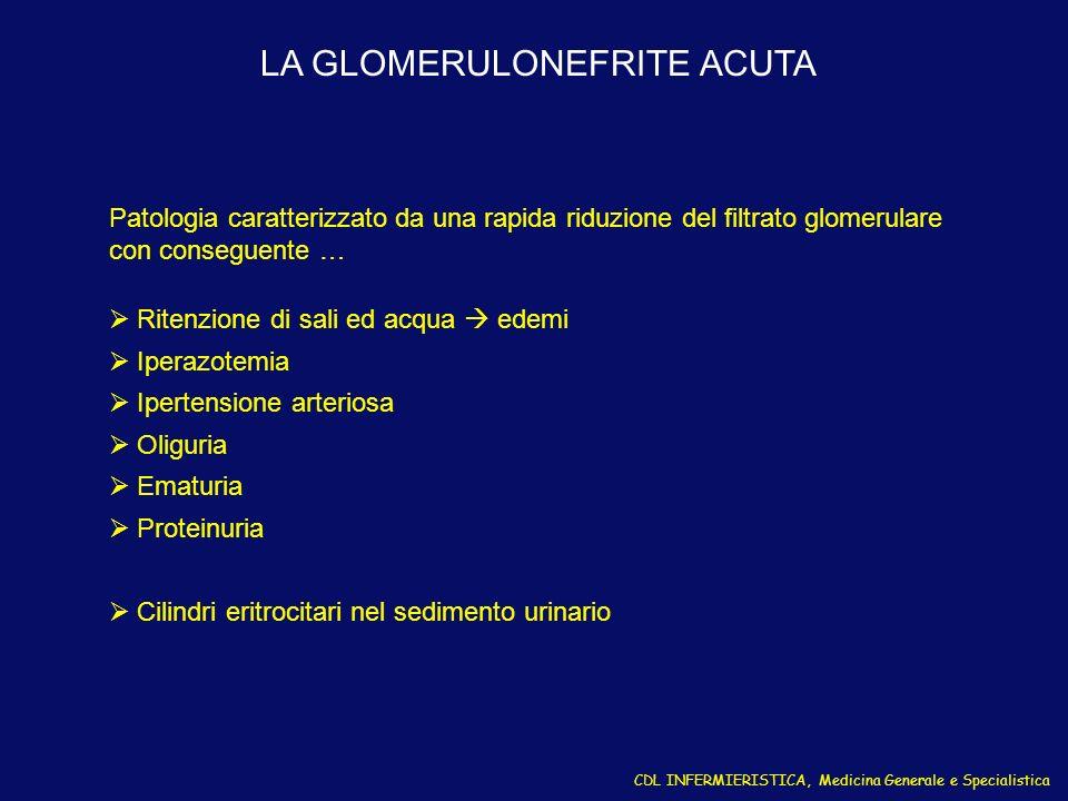 LA GLOMERULONEFRITE ACUTA CDL INFERMIERISTICA, Medicina Generale e Specialistica Patologia caratterizzato da una rapida riduzione del filtrato glomeru