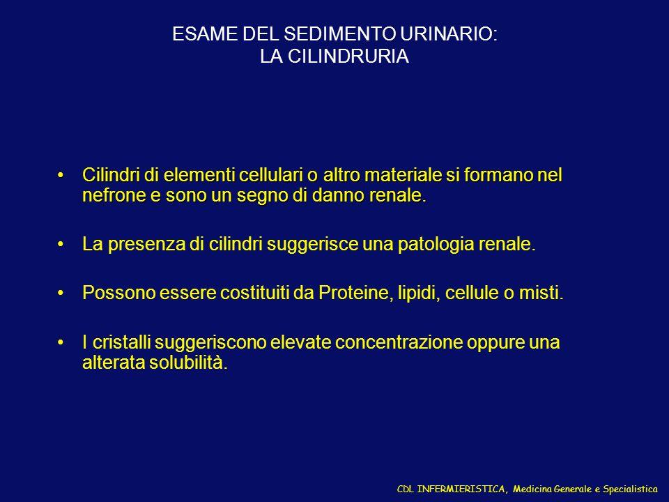 ESAME DEL SEDIMENTO URINARIO: LA CILINDRURIA Cilindri di elementi cellulari o altro materiale si formano nel nefrone e sono un segno di danno renale.C