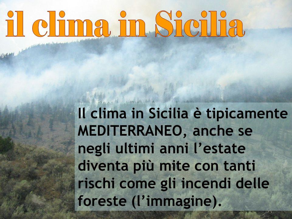 Il clima in Sicilia è tipicamente MEDITERRANEO, anche se negli ultimi anni lestate diventa più mite con tanti rischi come gli incendi delle foreste (l