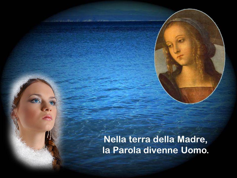 Il mistero di Maria è la Parola di Dio che non rimane sola.