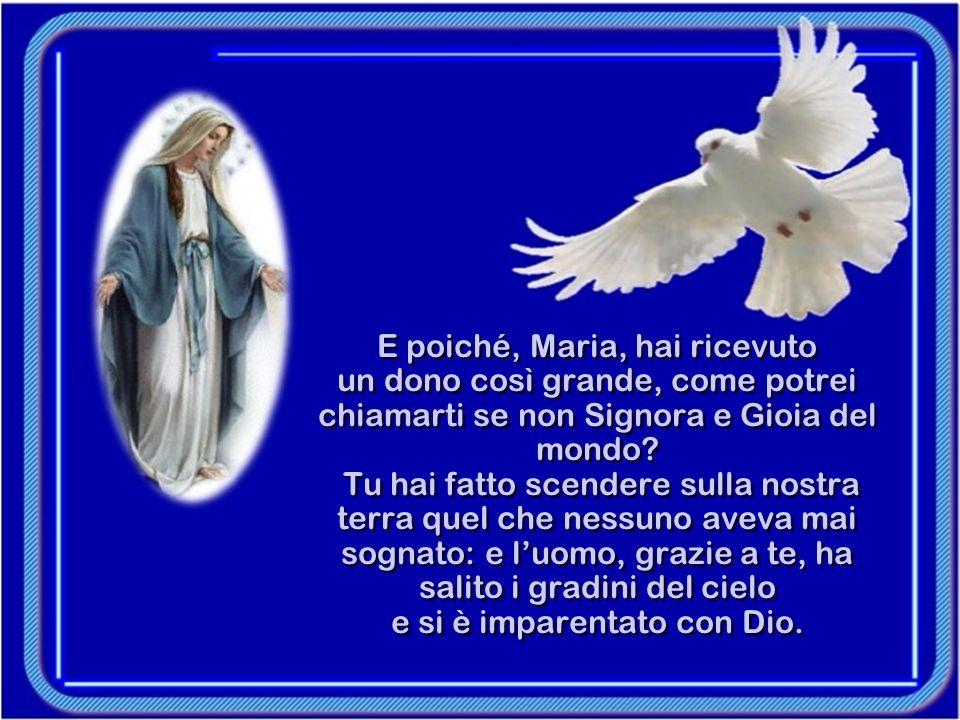 Se una Vergine ha partorito Colui che che porta il nome di Dio, quale gloria maggiore può esistere per un uomo.