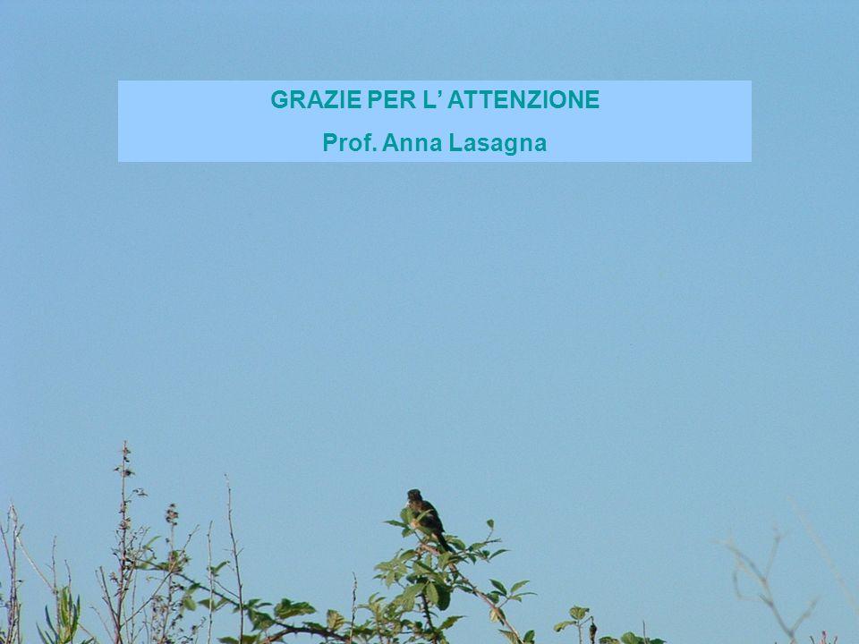 GRAZIE PER L ATTENZIONE Prof. Anna Lasagna