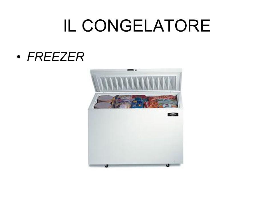 IL CONGELATORE FREEZER