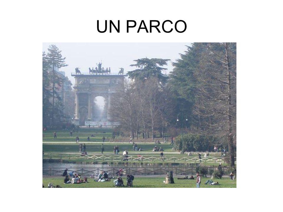 UN PARCO