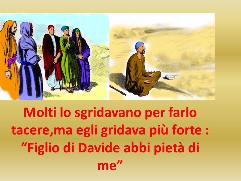 Molti lo sgridavano per farlo tacere,ma egli gridava più forte : Figlio di Davide abbi pietà di me