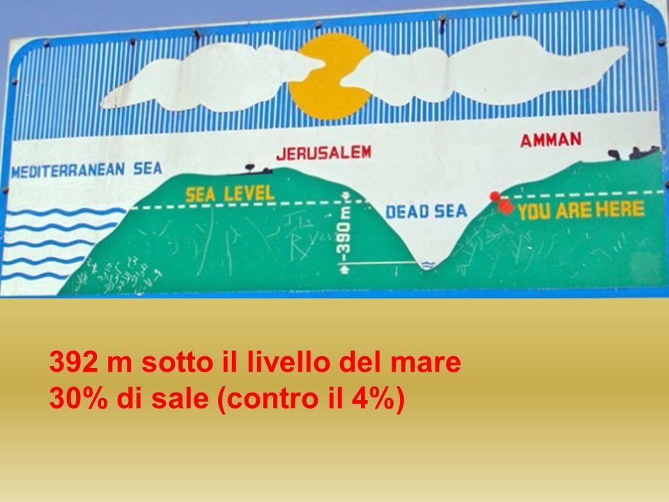 392 m sotto il livello del mare 30% di sale (contro il 4%)