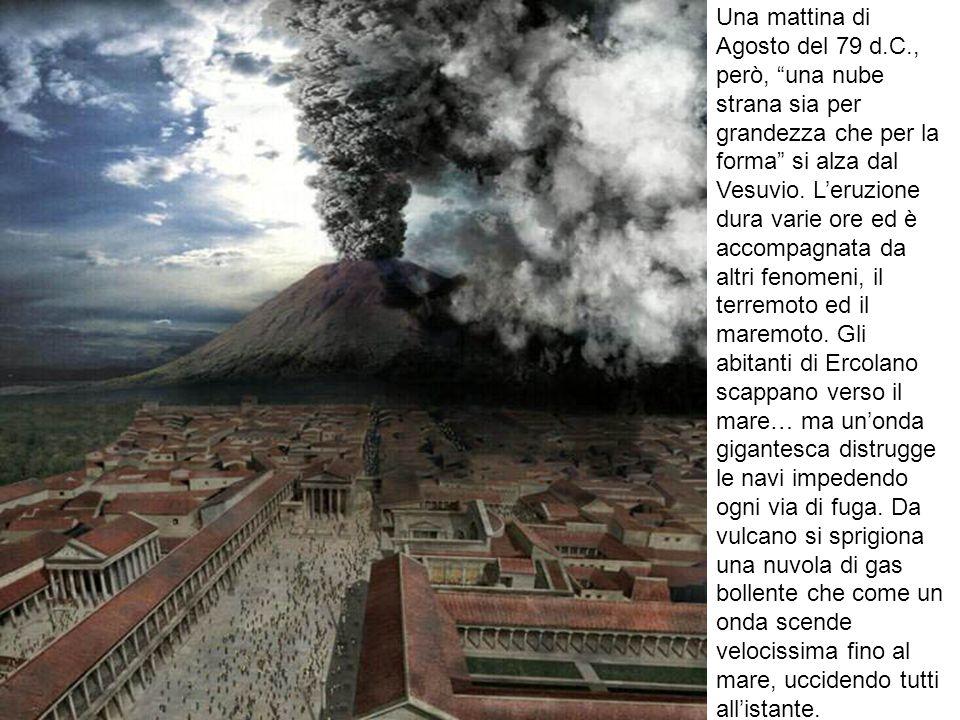 Una mattina di Agosto del 79 d.C., però, una nube strana sia per grandezza che per la forma si alza dal Vesuvio. Leruzione dura varie ore ed è accompa