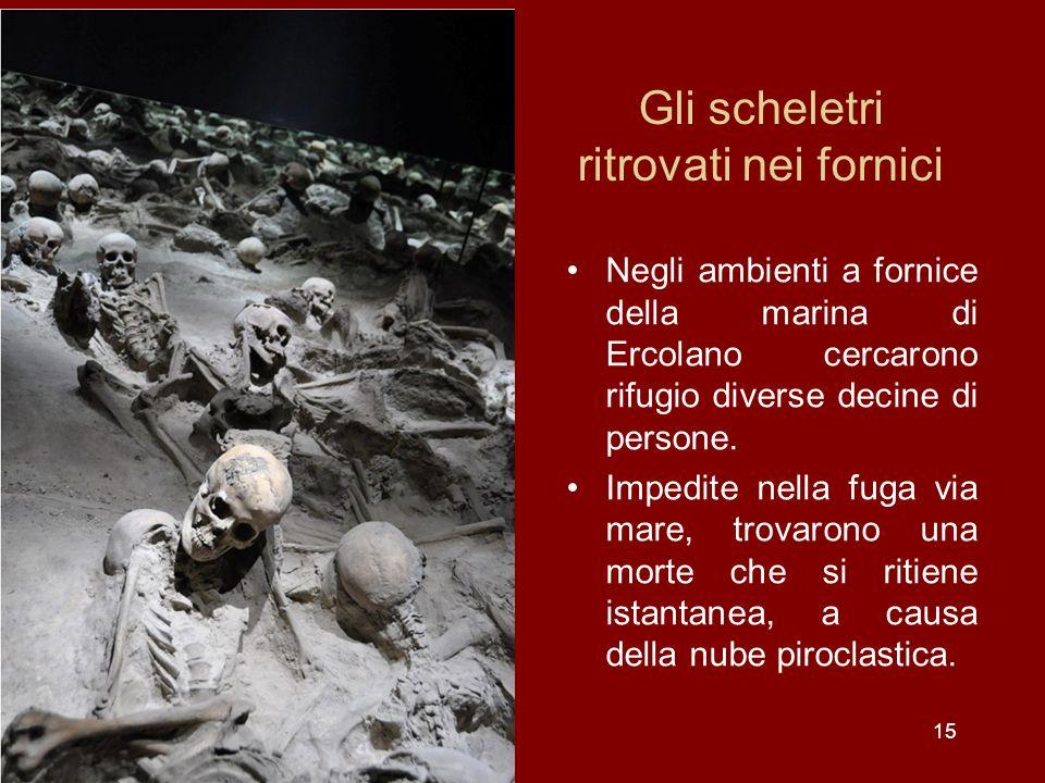 Gli scheletri ritrovati nei fornici Negli ambienti a fornice della marina di Ercolano cercarono rifugio diverse decine di persone. Impedite nella fuga