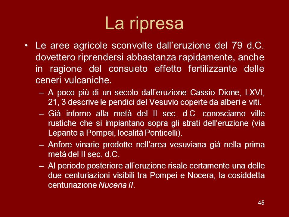 45 La ripresa Le aree agricole sconvolte dalleruzione del 79 d.C. dovettero riprendersi abbastanza rapidamente, anche in ragione del consueto effetto