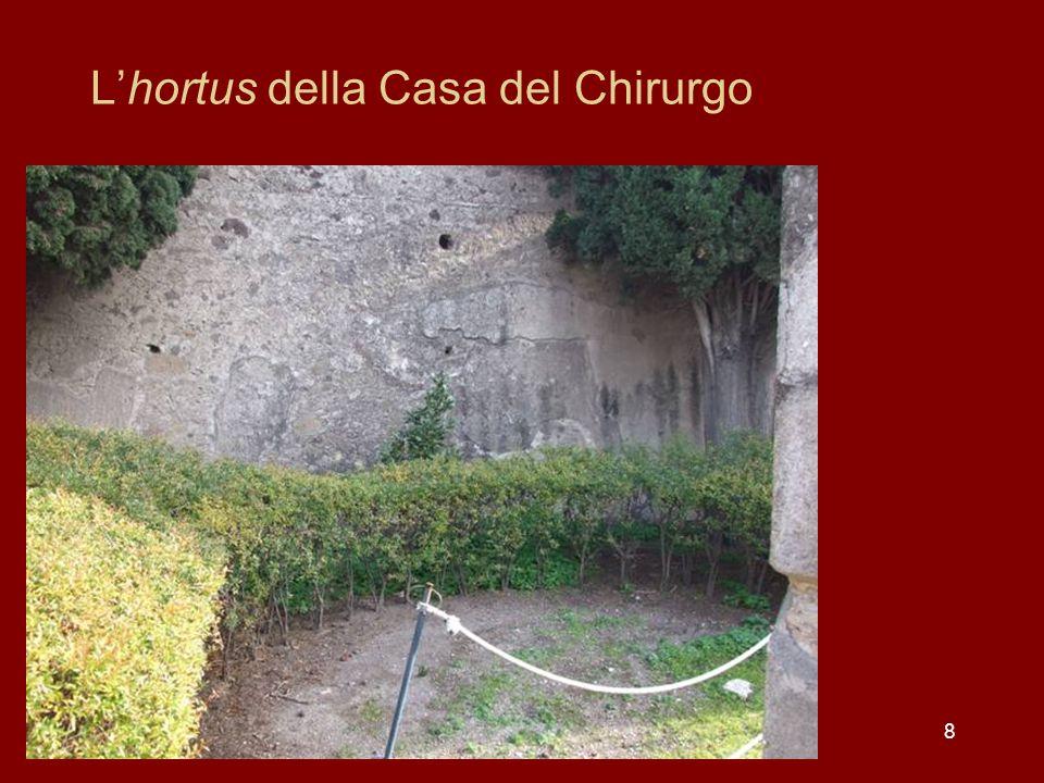 Il simbolo della corona civica Una domus pompeiana della regio II, insula II presentava sopra lin- gresso il simbolo della corona civica.
