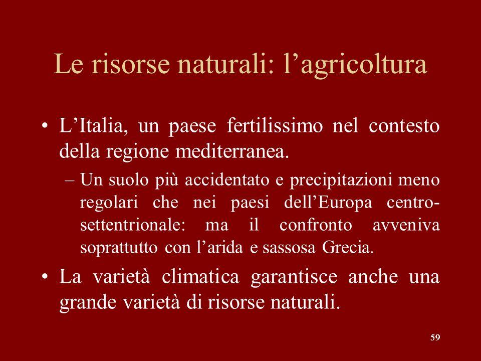 59 Le risorse naturali: lagricoltura LItalia, un paese fertilissimo nel contesto della regione mediterranea. –Un suolo più accidentato e precipitazion