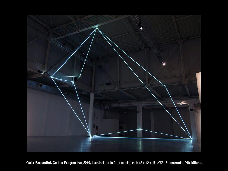 Carlo Bernardini, Codice Progressivo 2010, Installazione in fibre ottiche, mt h 12 x 12 x 18. XXL, Superstudio Più, Milano.