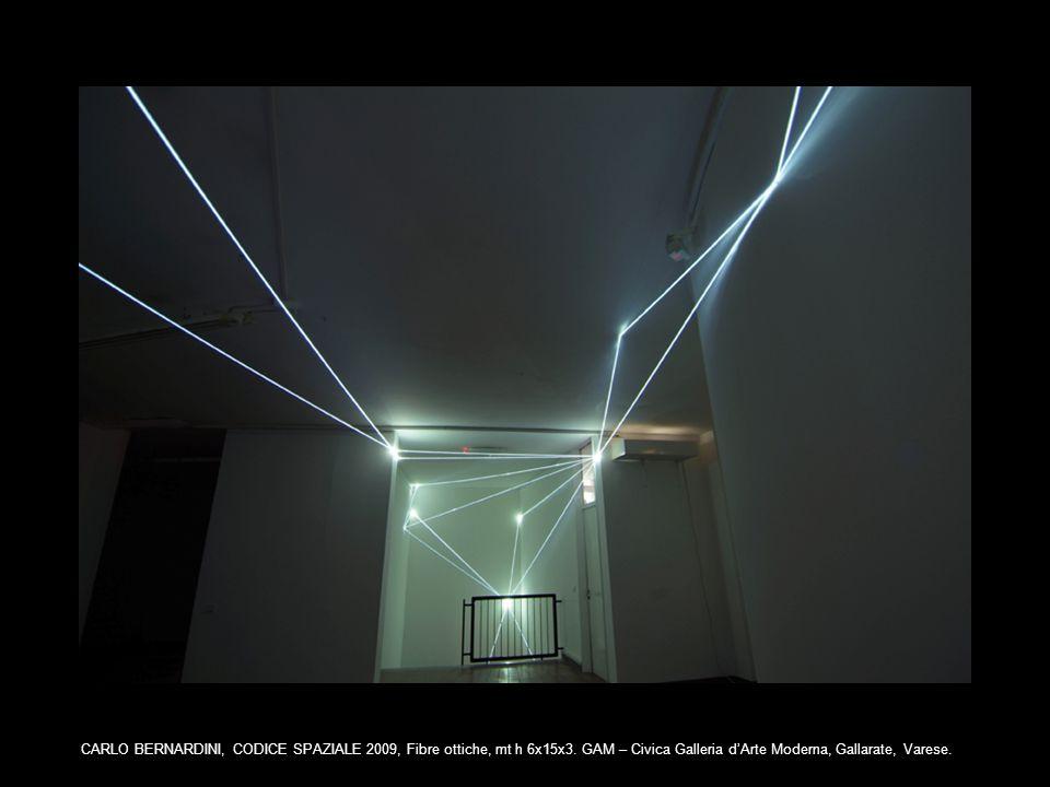 CARLO BERNARDINI, CODICE SPAZIALE 2009, Fibre ottiche, mt h 6x15x3. GAM – Civica Galleria dArte Moderna, Gallarate, Varese.
