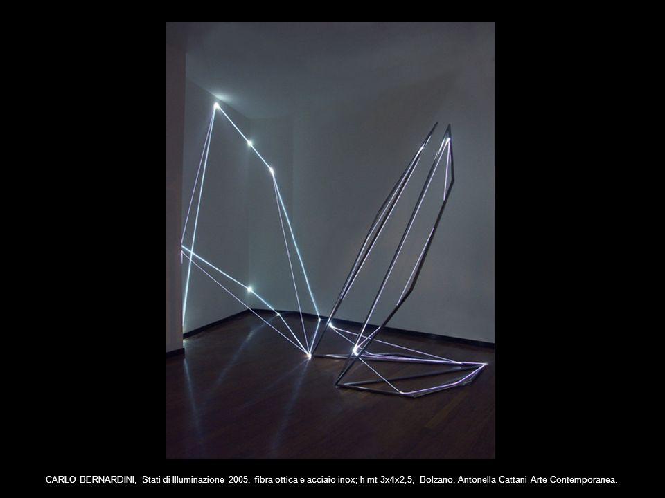CARLO BERNARDINI, Stati di Illuminazione 2005, fibra ottica e acciaio inox; h mt 3x4x2,5, Bolzano, Antonella Cattani Arte Contemporanea.