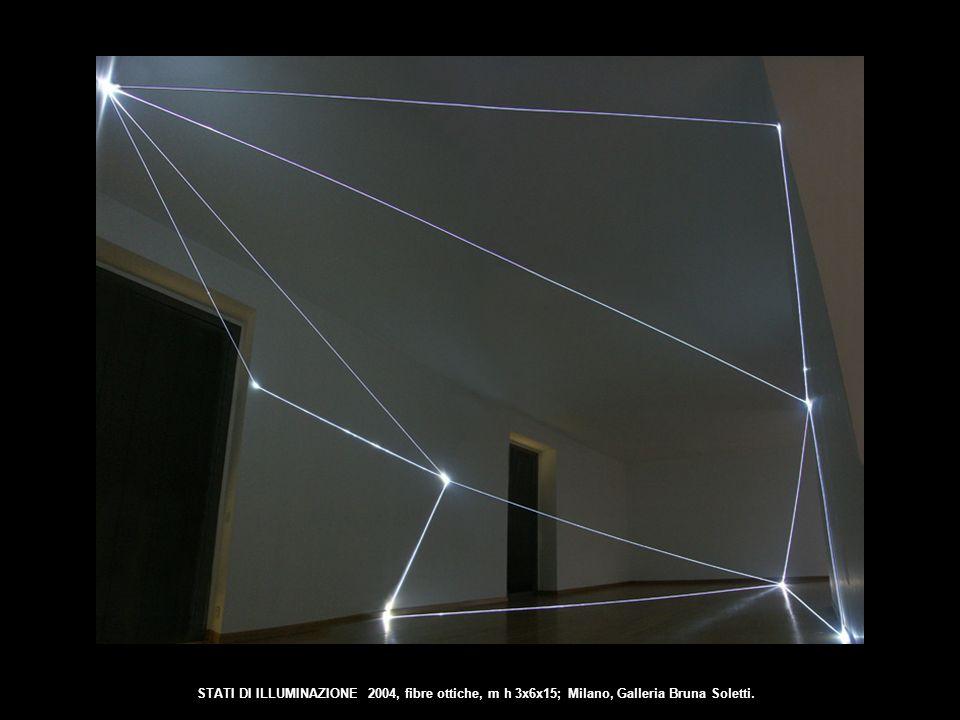 STATI DI ILLUMINAZIONE 2004, fibre ottiche, m h 3x6x15; Milano, Galleria Bruna Soletti.