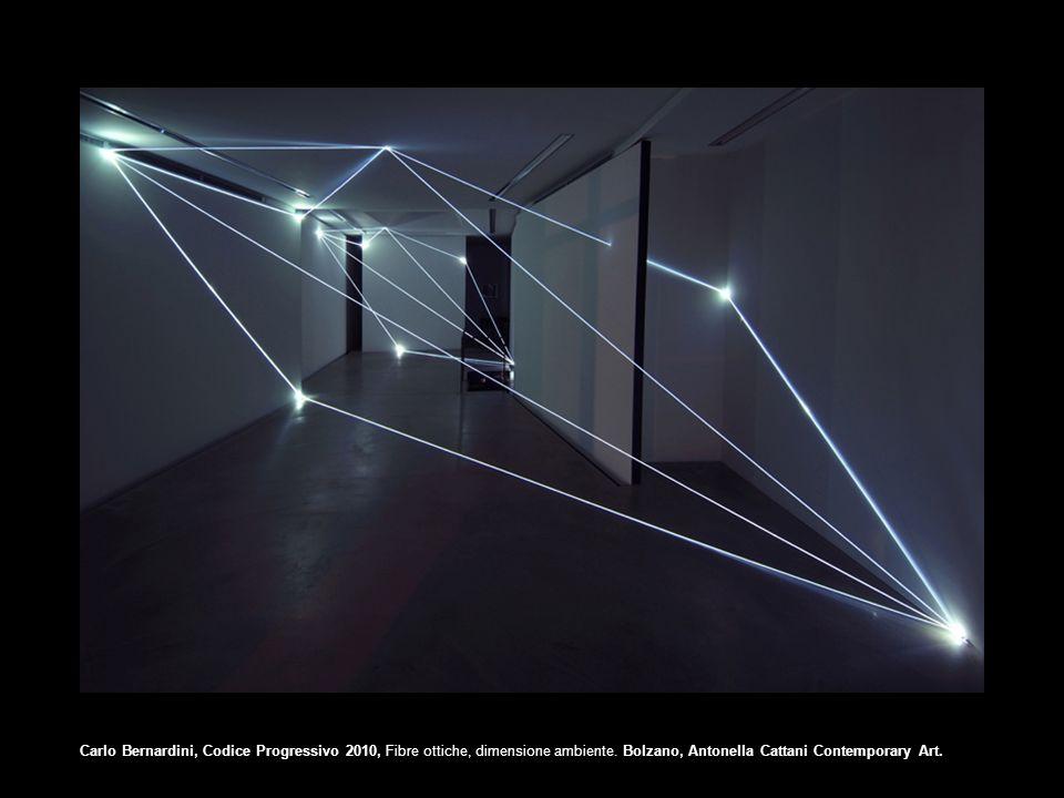 Carlo Bernardini, Codice Progressivo 2010, Fibre ottiche, dimensione ambiente. Bolzano, Antonella Cattani Contemporary Art.