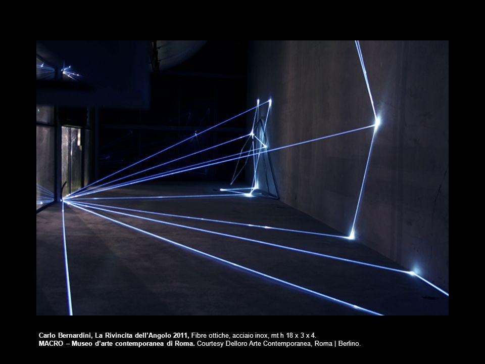 Carlo Bernardini, La Rivincita dellAngolo 2011, Fibre ottiche, acciaio inox, mt h 18 x 3 x 4. MACRO – Museo darte contemporanea di Roma. Courtesy Dell