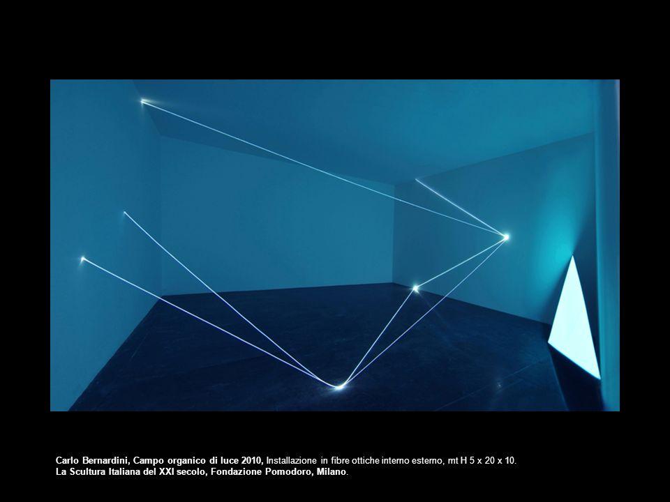 Carlo Bernardini, Campo organico di luce 2010, Installazione in fibre ottiche interno esterno, mt H 5 x 20 x 10. La Scultura Italiana del XXI secolo,