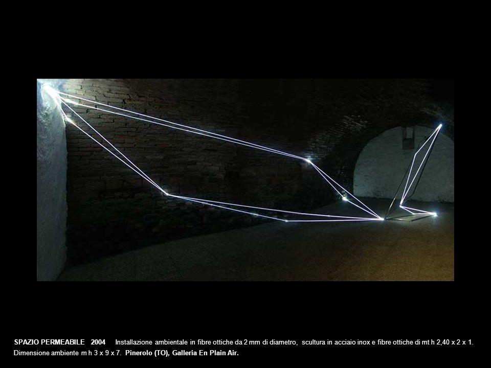 SPAZIO PERMEABILE 2004 Installazione ambientale in fibre ottiche da 2 mm di diametro, scultura in acciaio inox e fibre ottiche di mt h 2,40 x 2 x 1. D