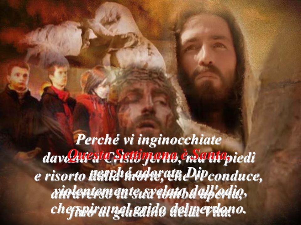 Perché vi inginocchiate davanti a Cristo ferito, ma in piedi e risorto dalla morte, che vi conduce, attraverso la sua tomba aperta, fino al giardino della Vita.