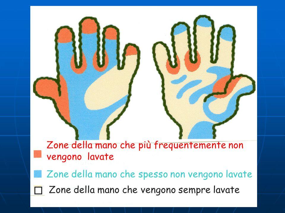 Zone della mano che più frequentemente non vengono lavate Zone della mano che spesso non vengono lavate Zone della mano che vengono sempre lavate