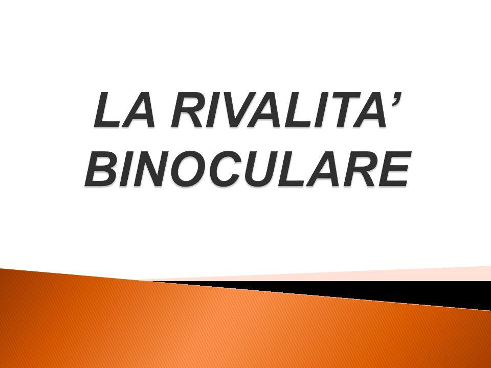 STIMULUS RIVALRY (rivalità tra le immagini nella loro globalità)