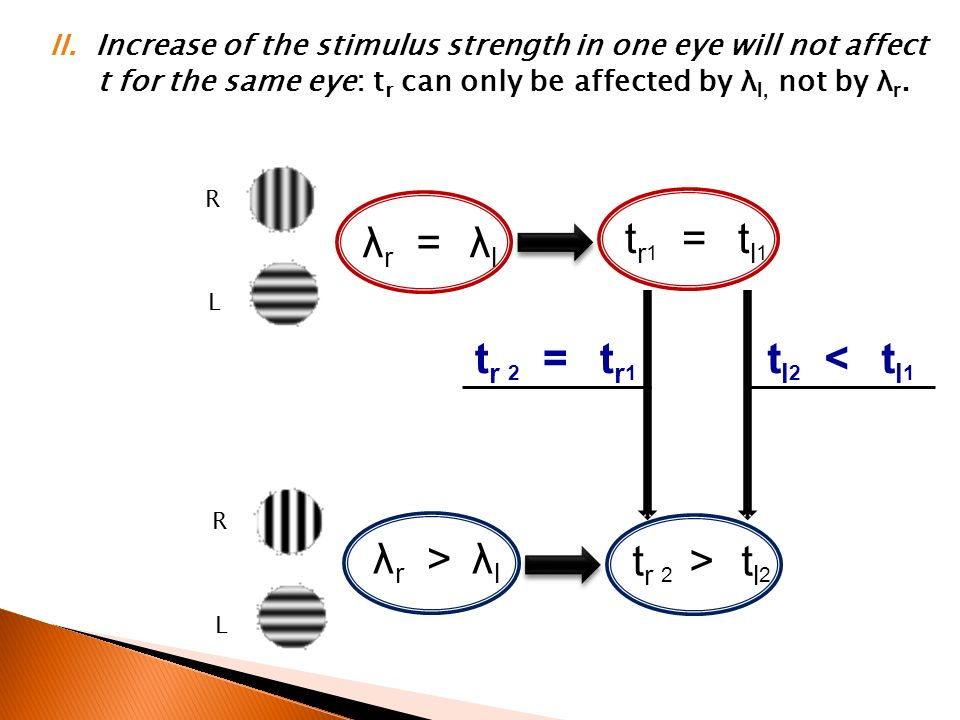 R L λ r = λ l t r 1 = t l 1 R L λ r > λ l t r 2 > t l 2 t r 2 = t r 1 t l 2 < t l 1 II. Increase of the stimulus strength in one eye will not affect t