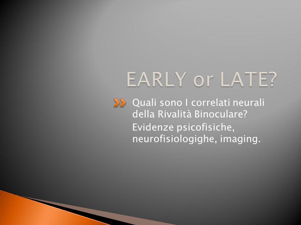 Quali sono I correlati neurali della Rivalità Binoculare? Evidenze psicofisiche, neurofisiologighe, imaging.