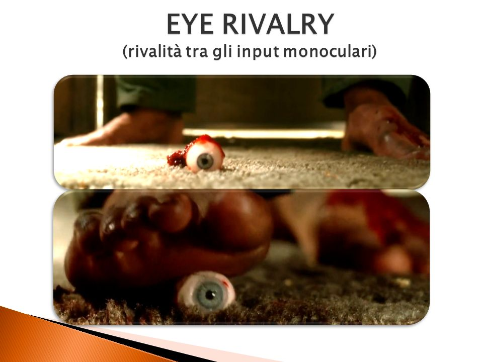 EYE RIVALRY (rivalità tra gli input monoculari)