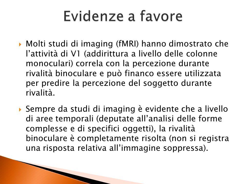 Molti studi di imaging (fMRI) hanno dimostrato che lattività di V1 (addirittura a livello delle colonne monoculari) correla con la percezione durante