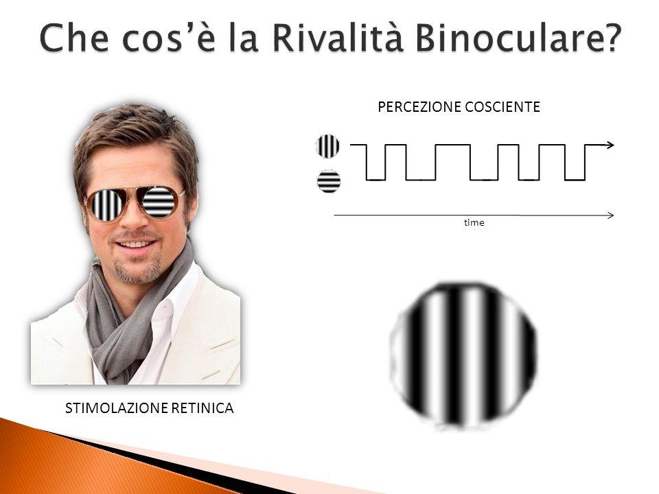 Quali sono I correlati neurali della Rivalità Binoculare.