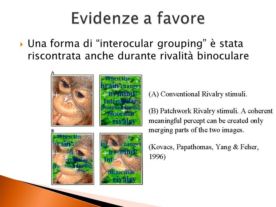Una forma di interocular grouping è stata riscontrata anche durante rivalità binoculare