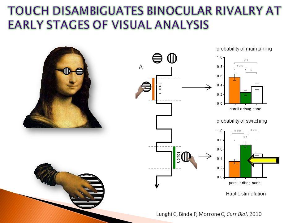 Lunghi C, Binda P, Morrone C, Curr Biol, 2010 probability of maintaining probability of switching Haptic stimulation