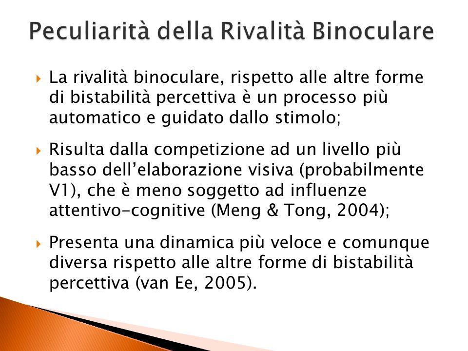 La rivalità binoculare, rispetto alle altre forme di bistabilità percettiva è un processo più automatico e guidato dallo stimolo; Risulta dalla compet