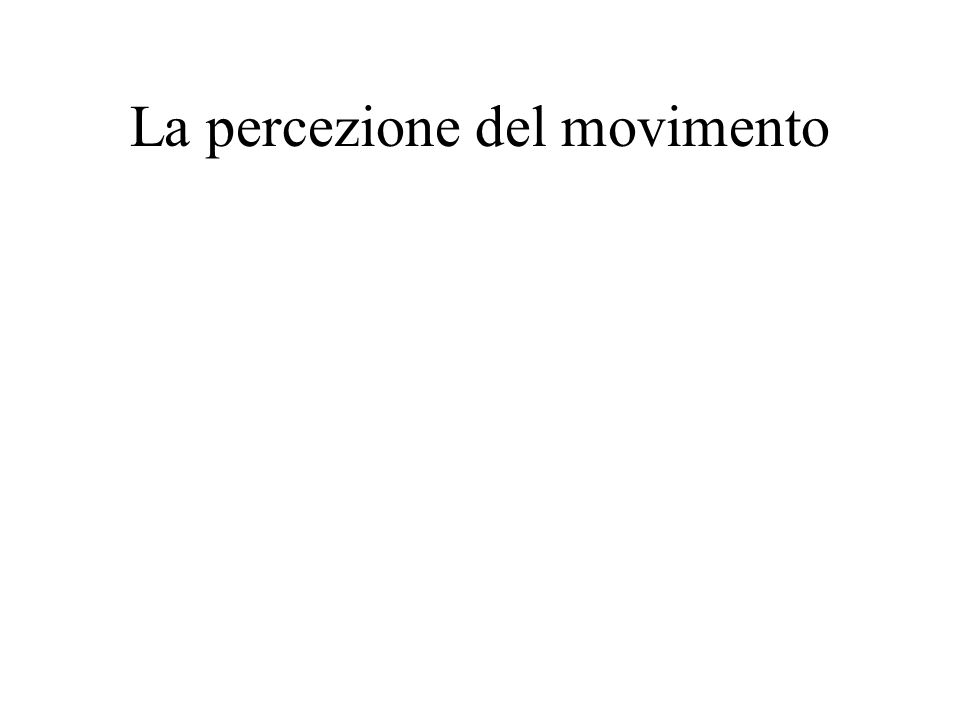 Positional motion aftereffect (PMAE) Snowden (1998) Curr. Biol. Nishida & Johnson (1999) Nature