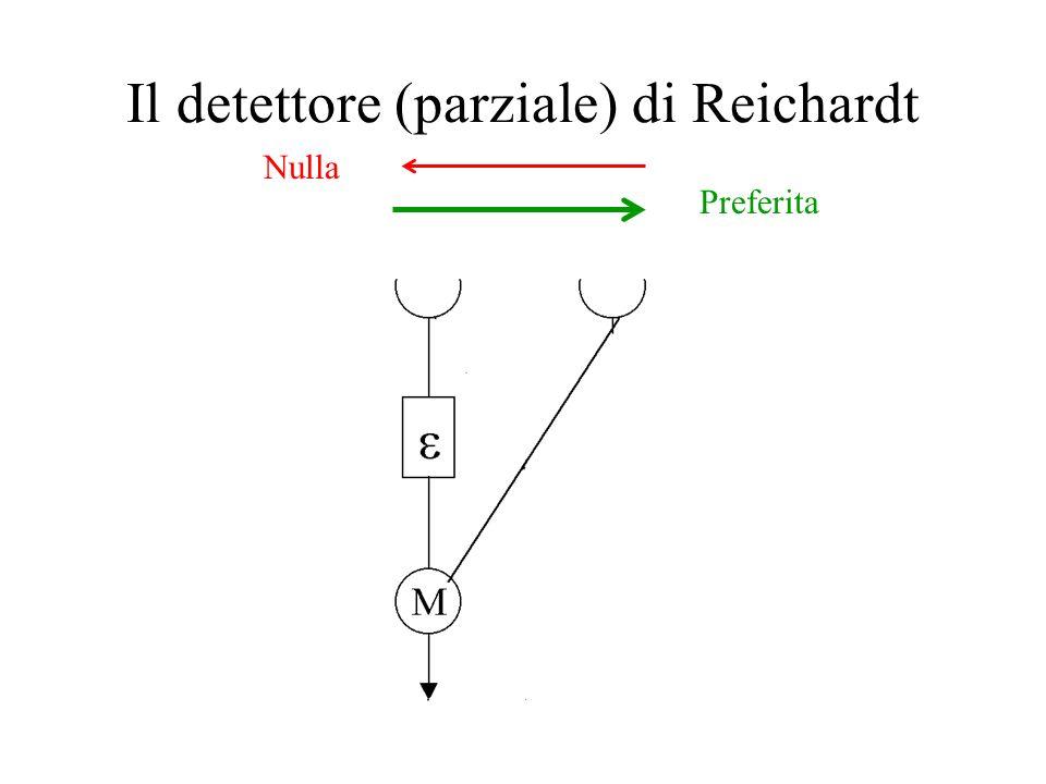 Il detettore (parziale) di Reichardt Preferita Nulla