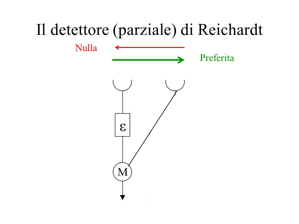 Il detettore (completo) di Reichardt
