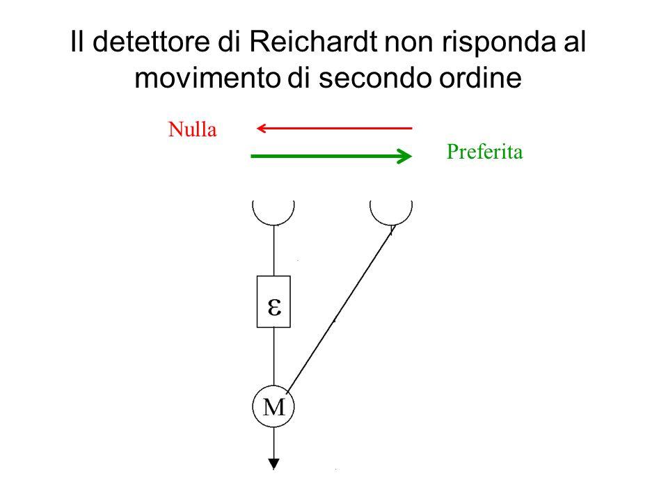 Il detettore di Reichardt non risponda al movimento di secondo ordine Preferita Nulla