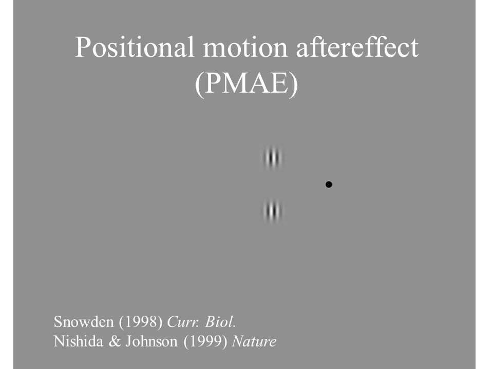 Positional motion aftereffect (PMAE) Snowden (1998) Curr. Biol. Nishida & Johnson (1999) Nature