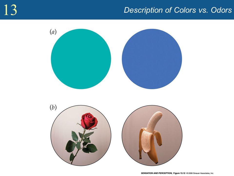 13 Description of Colors vs. Odors