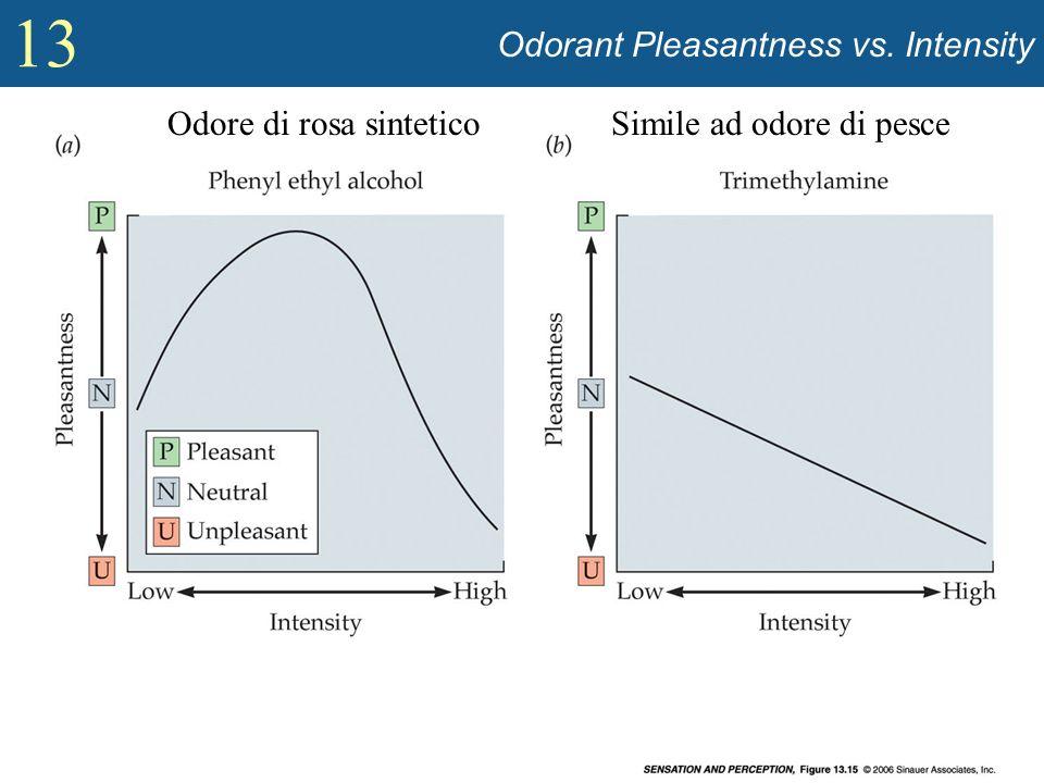 13 Odorant Pleasantness vs. Intensity Odore di rosa sinteticoSimile ad odore di pesce
