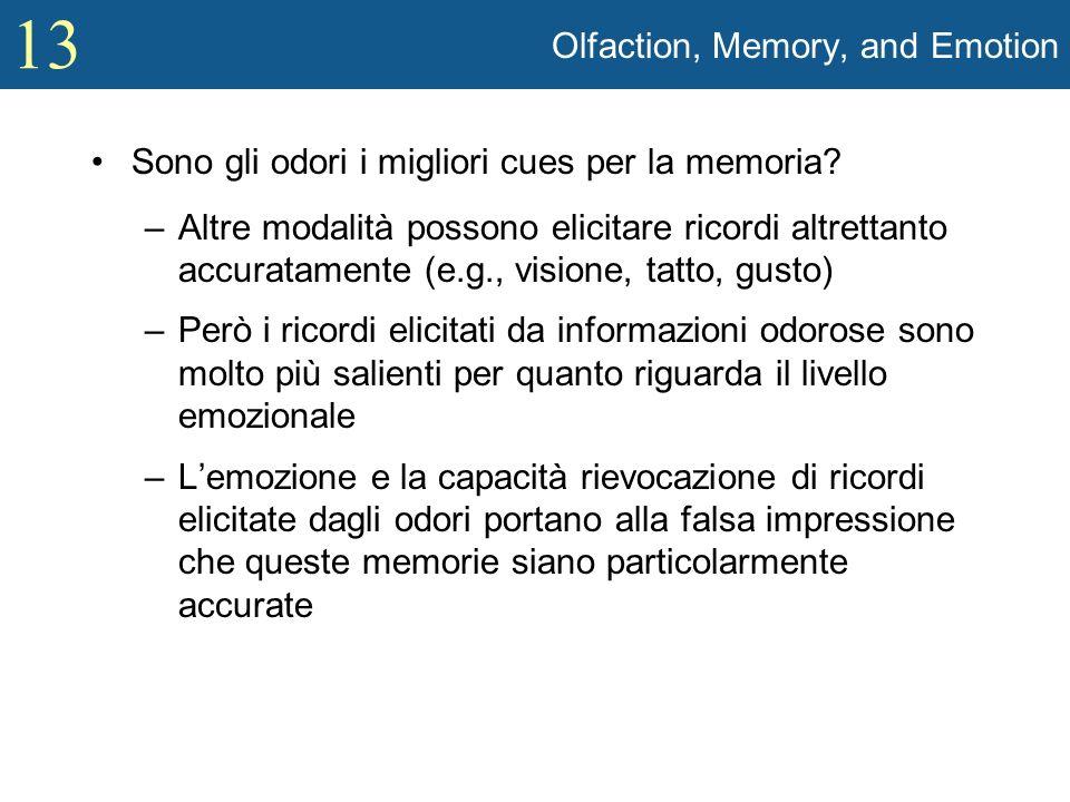 13 Olfaction, Memory, and Emotion Sono gli odori i migliori cues per la memoria? –Altre modalità possono elicitare ricordi altrettanto accuratamente (